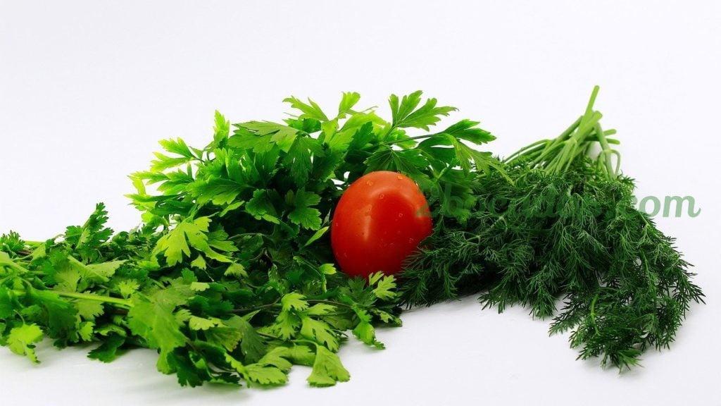 beneficios-cilantro-y-perejil-2bocados